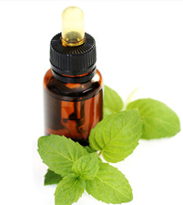 Peppermintoil-267x300 Essential Oil Chart for Its Uses,Benefits, Application and Properties
