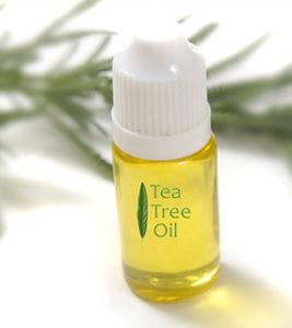 Tea-Tree-Oil-1-267x300 6 Best Essential Oils That Help Manage Pet Allergies