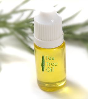 Tea-Tree-Oil-1 Getting The Best Allergy Relief With Essential Oils? What...But How?!